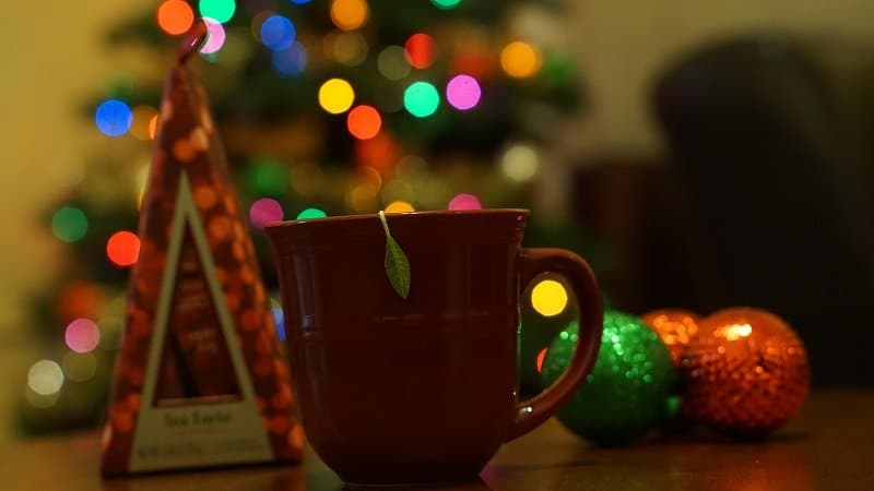 Cozy Up for the Holidays with Tea Forté Teas