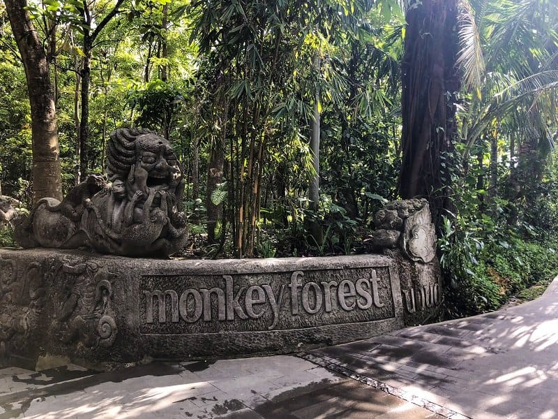 Instagrammable places in Bali - Ubud Monkey Forest